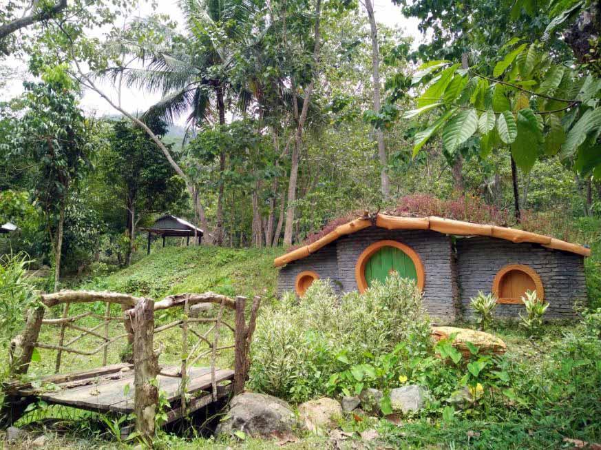 Wisata Alam Rawa Bangun Polewali Mandar Sulawesi Barat - 4