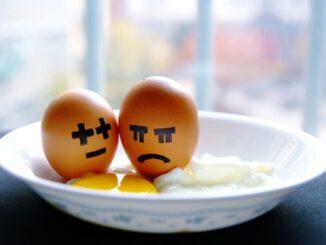 khasiat telur ayam - fungsi kuning telur - manfaat makan telur - Photo by KS KYUNG on Unsplash