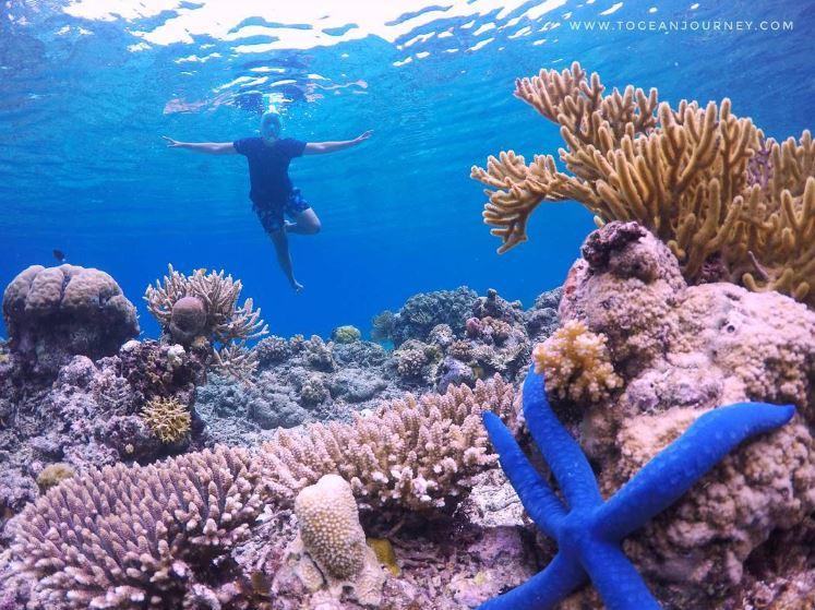Kepulauan Kabalutan Kabalutan Kepulauan Togean - @togeanjourney