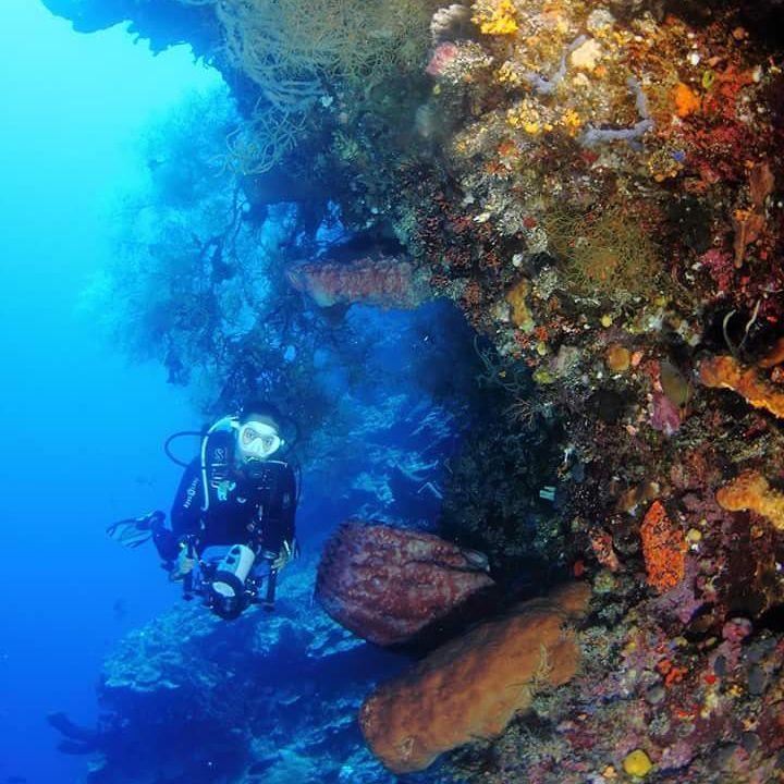 Kepulauan Togean - pesonawisata.sultengprovgoid