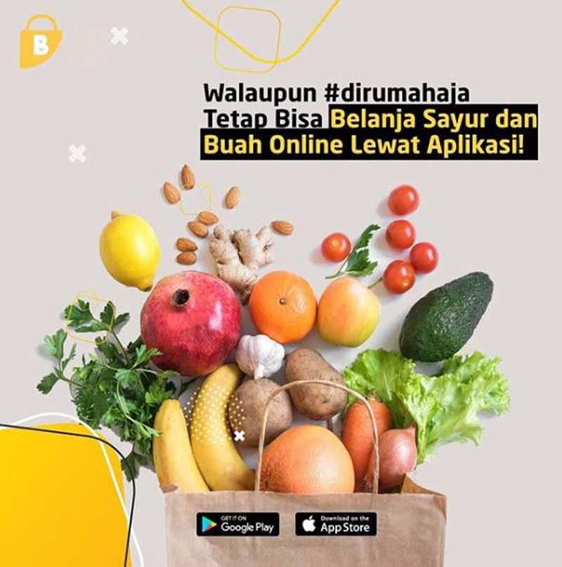 Aplikasi belanja sayur online - @baqoel_official