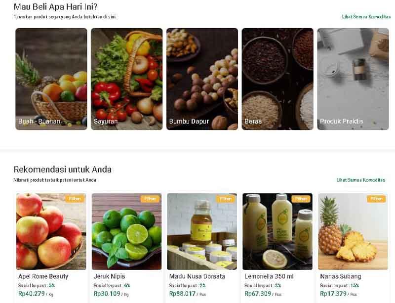 belanja sayur online - regopantescom