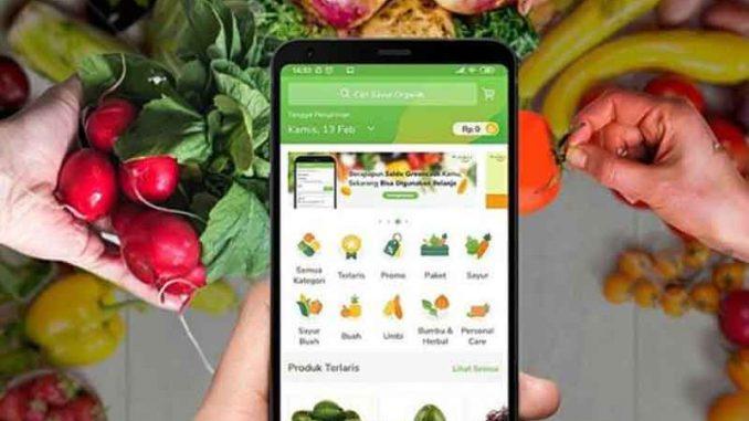 Cara Mudah Belanja Sayur Online Lewat 4 Aplikasi Ini !