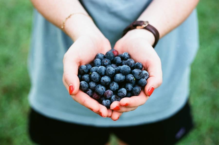 Fakta Manfaat Blueberry Bagi Ibu Hamil - andrew welch - i5Crg4KLblY - unsplash