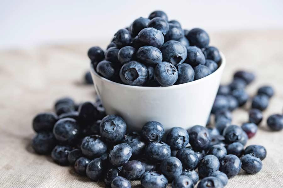 Manfaat Blueberry Bagi Kesehatan Tubuh Manusia - joanna kosinska 4qujjbj3srs unsplash