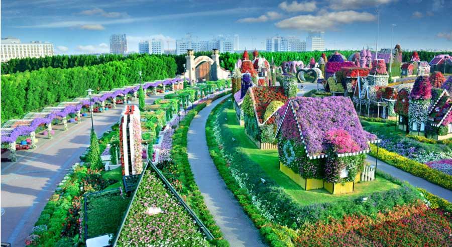 Foto Gambar Dubai Miracle Garden - 4
