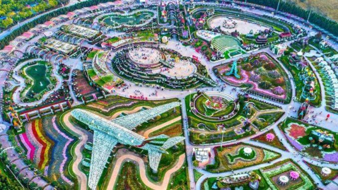 Foto Gambar Dubai Miracle Garden - 5
